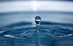 L'acqua: disponibilità e impieghi razionali (agricolo, industriale, civile)