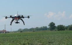 Nella innovazione il volto migliore dell'agricoltura italiana