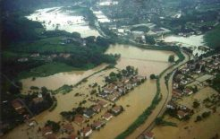 Riqualificazione della pianta organica dei comuni a difesa dalle frane e dalle alluvioni