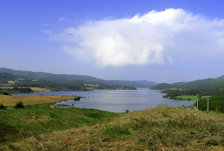 Il ruolo dell'acqua nell'equilibrio dell'ecosistema