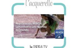 REACH, campagna di informazione